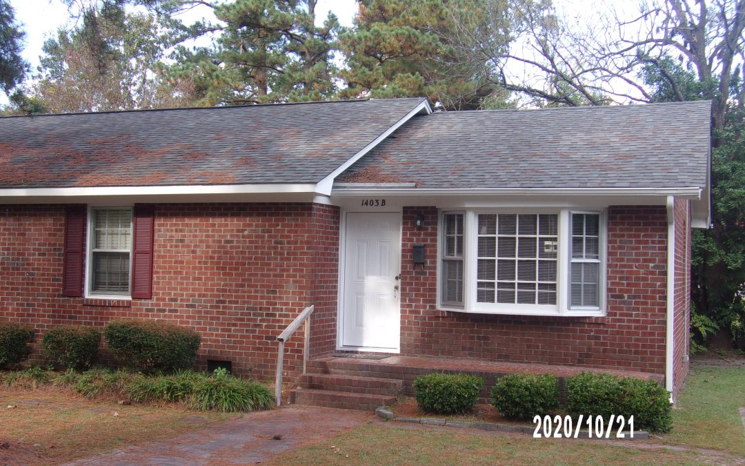 1403 East 2nd Street Greenville NC  AVAILABLE NOW